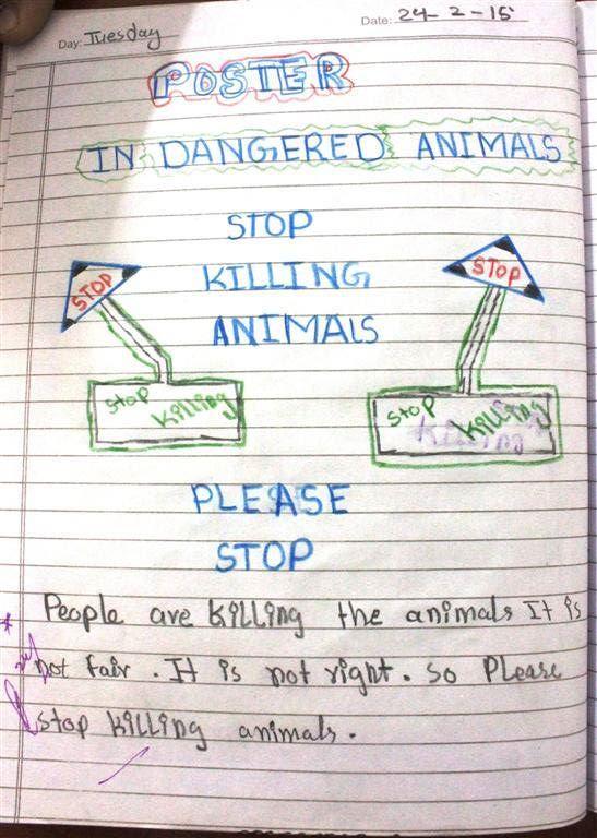stop killing aninals