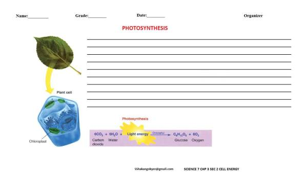 SCIENCE-7-CHP-3-2-photosynthesis