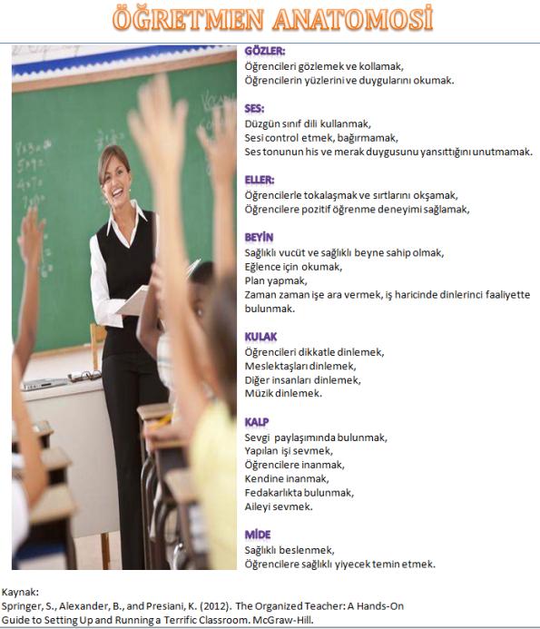 Öğretmen anatomosi